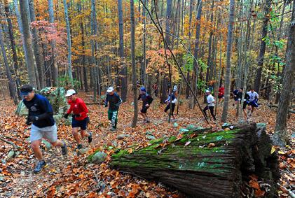Autumn Runners