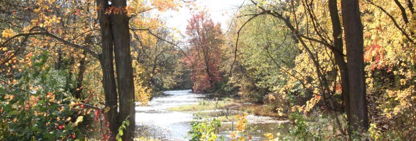 manchester-gateway-trail-fall
