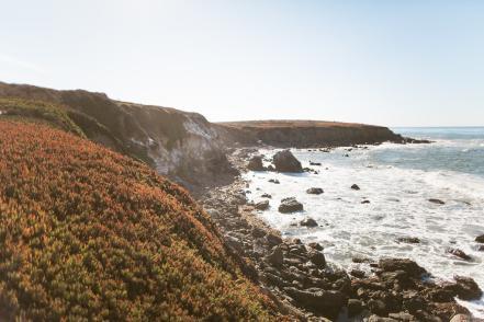 Cambria Shoreline
