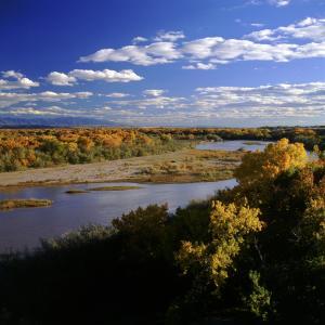 Albuquerque Rio Grande Looking South