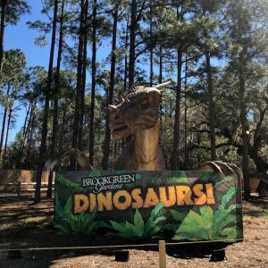 Brookgreen Gardens Dinaosaurs!