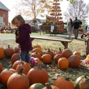 Oakland Nursery Fall Festival