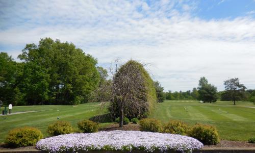 Airway-Meadows-Golf (4)