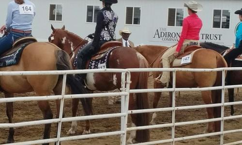 Saratoga County Fair cowboys on horses