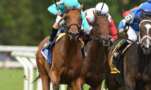 NYRA Crowd 3 Horses Racing