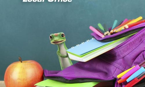 GEICO gecko with a pile of books