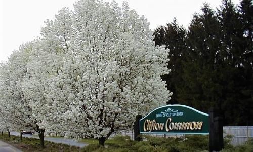 Clifton Common Entrance