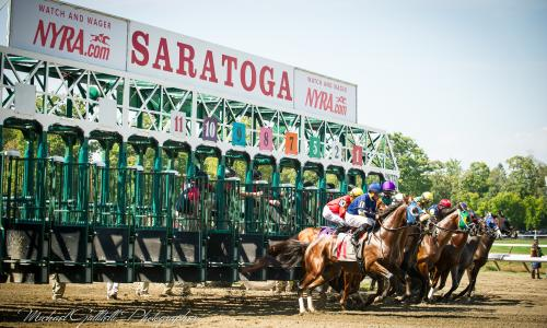 Metroland Photo Horses out of Gate