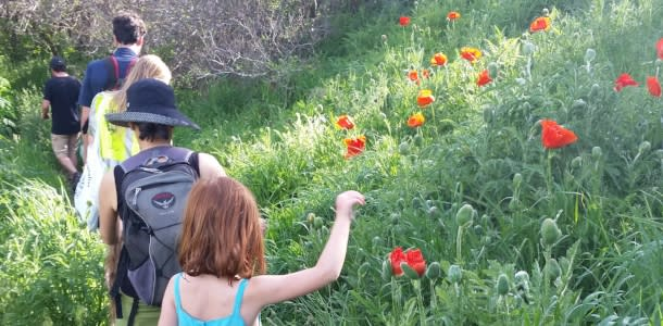 Family hiking McClintock Trail Meadow