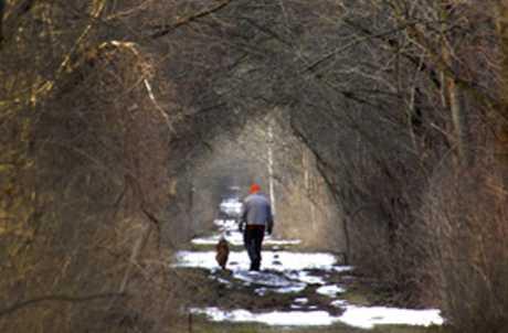 Auburn Fleming Trail for TourCayuga