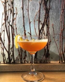 Flying Squirrel_Cocktail