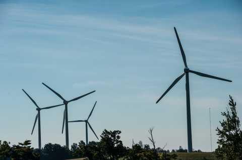 Fenner Wind Farm 1