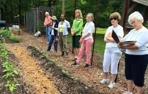 Dunwoody Woman's Club Garden