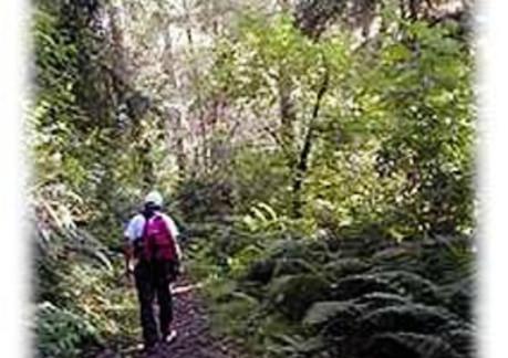 2229P3Coastal Trail.jpg