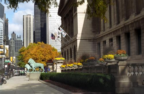 Art Institute during Fall