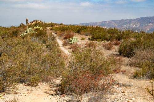 Limestone Ridge Trail in Limestone Canyon on Irvine Ranch