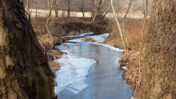 Winter at Burkhart Creek Park