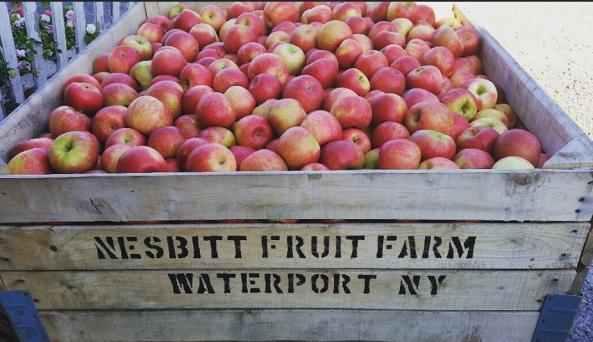 Vintage Apple Garden