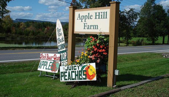 apple hill 1.jpg