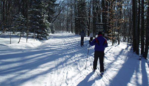 Skiers at Art Roscoe