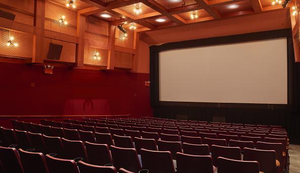 BAM Rose Cinema 2, Zach Hyman