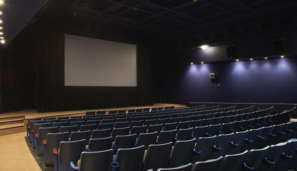 BAM Rose Cinema 4, Zach Hyman