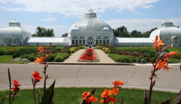 Buffalo and Erie County Botanical Gardens - Photo by Paul Scharf - Courtesy of Buffalo and Erie Bota
