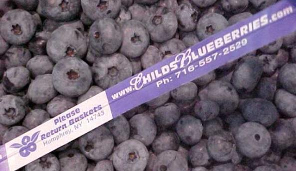 Childs Blueberry Farm