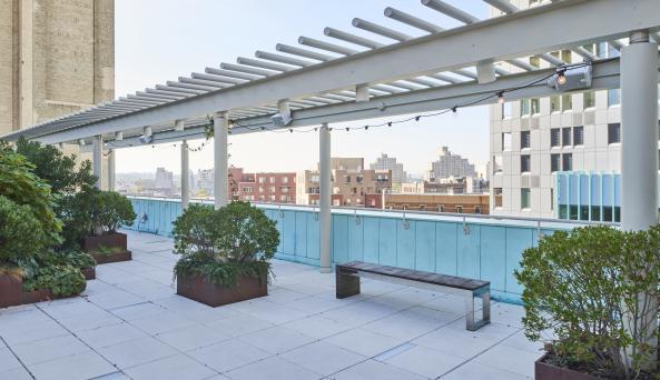 Fisher rooftop alfresco, Zach Hyman