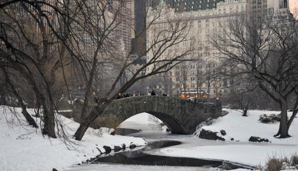 Central Park Winter - Photo by Julienne Schaer - Courtesy of NYC & Co