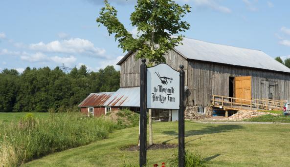 Mennonite Heritage Farm - Photo Courtesy of Mennonite Heritage Farm