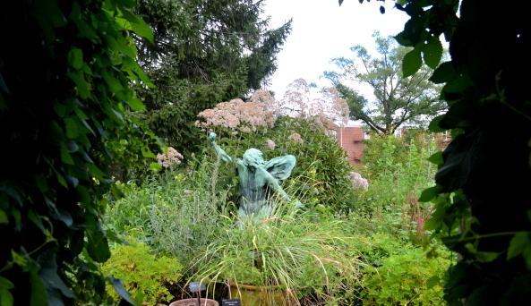 Herb Garden in Summer by Anne Tan-Detchkov