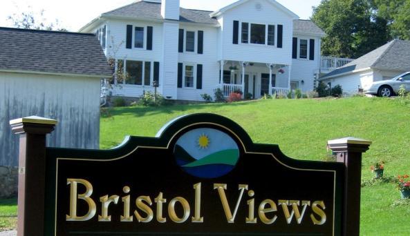 Fingerlakes_BristolViews.jpg