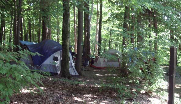 Taconic State Park - campsite