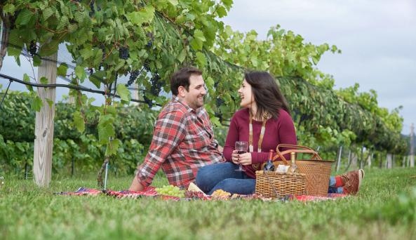 The Adirondack Coast Wine Trail