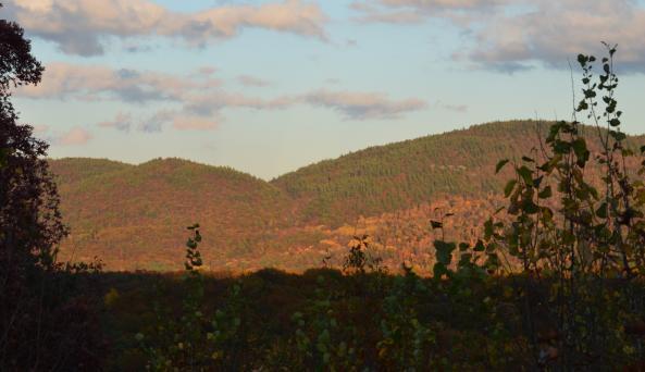 Prospect Mountain Veterans Highway ~ Fall
