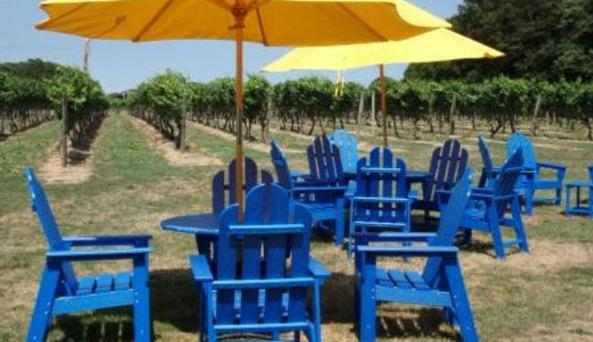 Castello Winery