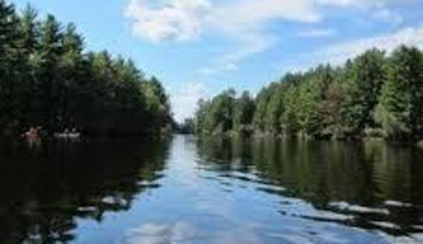 Beaver River Canoe