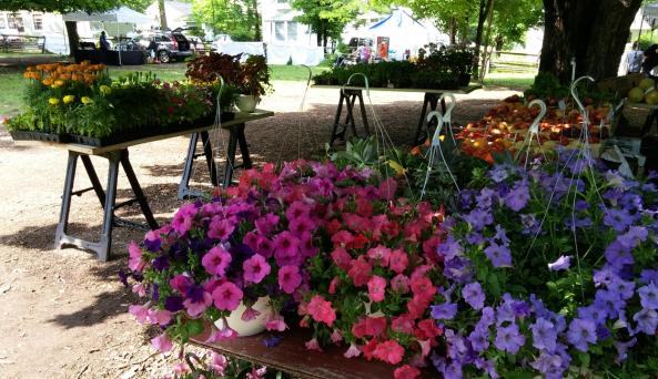 The green grocer brings a wide variety of beautiful flowers and fruits and veggie