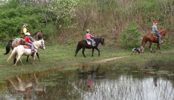 Double Dab Riding Stables