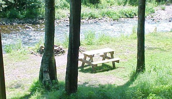 Willowemoc Campground