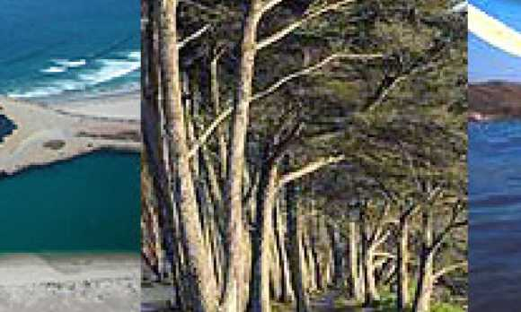 Morro Bay Vacation Stays Inc0.jpg