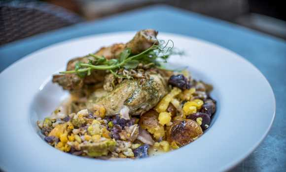 Thomas Hill Organics Chicken Plate