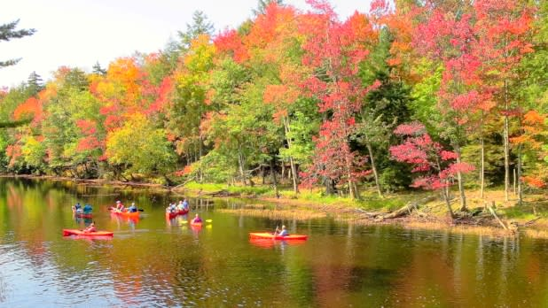 Tickner's Canoe