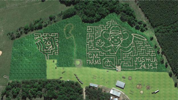 CM Farms Corn Maze
