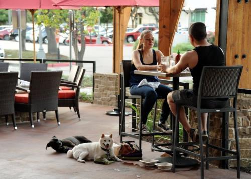 Lazy Dog Cafe