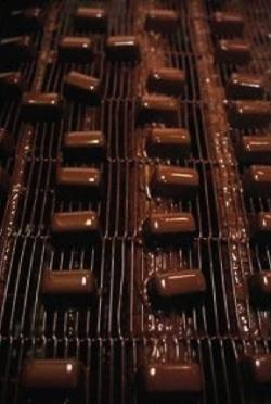 Seattle Chocolates factory
