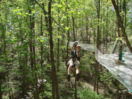 Swinging Through the Trees at Treetop Quest