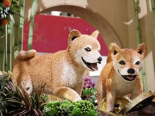 dog statue LNY