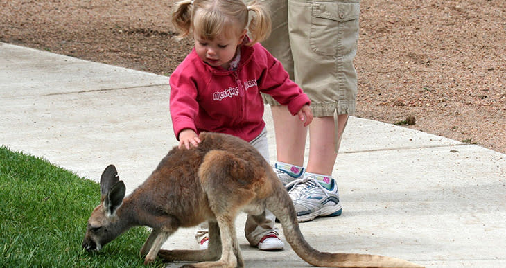 Tanganyika Wildlife Park - Wichita Family Fun